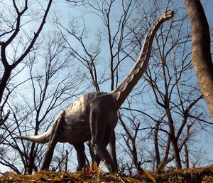 Brachiosaurus201701m