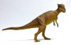 Pachycephalosaurus2007as