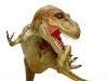 Tyrannosaurusu2fm